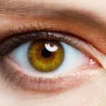 swift locksmith southampton watchful eye